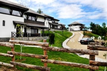 Satul Prunilor, vile de lux langa Sinaia